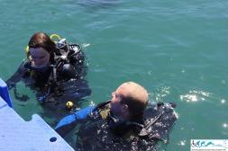 Dive A Thon_-70