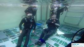 HSASA Diver Training-148