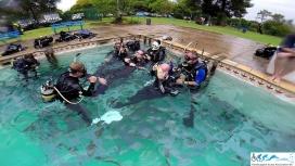 HSASA Diver Training-149
