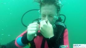 HSASA Diver Training-168